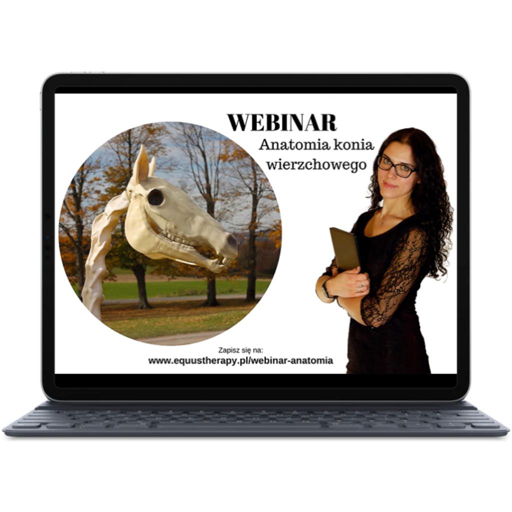 WEBINAR Anatomia Konia Wierzchowego